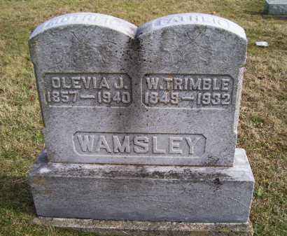 WAMSLEY, W. TRIMBLE - Adams County, Ohio | W. TRIMBLE WAMSLEY - Ohio Gravestone Photos