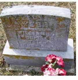 WEBB, WILLIAM L. - Adams County, Ohio | WILLIAM L. WEBB - Ohio Gravestone Photos