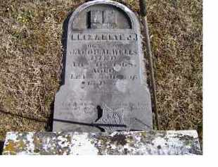 WELLS, ELIZABETH J. - Adams County, Ohio | ELIZABETH J. WELLS - Ohio Gravestone Photos