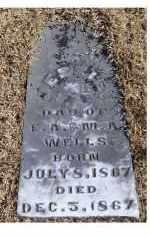 WELLS, JESSIE - Adams County, Ohio   JESSIE WELLS - Ohio Gravestone Photos