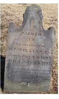 WILKINS, D. P. - Adams County, Ohio   D. P. WILKINS - Ohio Gravestone Photos
