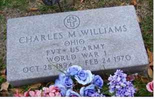 WILLIAMS, CHARLES M. - Adams County, Ohio | CHARLES M. WILLIAMS - Ohio Gravestone Photos