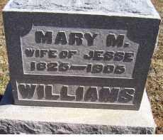 WILLIAMS, MARY M. - Adams County, Ohio | MARY M. WILLIAMS - Ohio Gravestone Photos