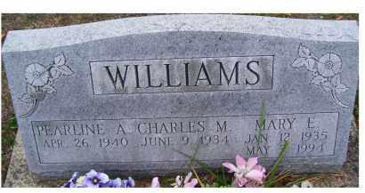 WILLIAMS, MARY E. - Adams County, Ohio | MARY E. WILLIAMS - Ohio Gravestone Photos