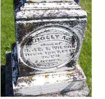 WILSON, DOLLY A. - Adams County, Ohio | DOLLY A. WILSON - Ohio Gravestone Photos