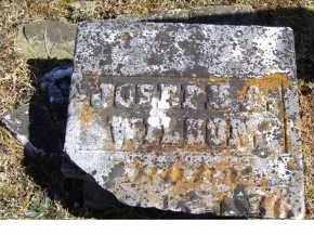 WILSON, JOSEPH A. - Adams County, Ohio | JOSEPH A. WILSON - Ohio Gravestone Photos