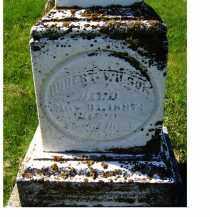 WILSON, ROBERT - Adams County, Ohio | ROBERT WILSON - Ohio Gravestone Photos