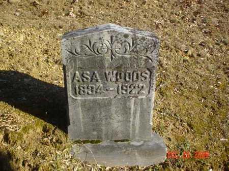 WOODS, ASA - Adams County, Ohio   ASA WOODS - Ohio Gravestone Photos