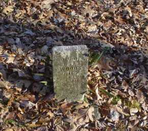 WOODS, HELEN - Adams County, Ohio   HELEN WOODS - Ohio Gravestone Photos
