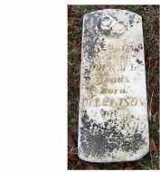 WOODS, JESSIE - Adams County, Ohio   JESSIE WOODS - Ohio Gravestone Photos