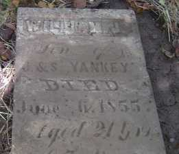 YANKEY, WILLIAM J. - Adams County, Ohio | WILLIAM J. YANKEY - Ohio Gravestone Photos