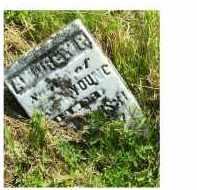 YOUNG, ANDREW P. - Adams County, Ohio | ANDREW P. YOUNG - Ohio Gravestone Photos