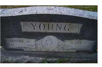 YOUNG, DAVID W. - Adams County, Ohio | DAVID W. YOUNG - Ohio Gravestone Photos
