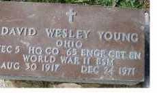 YOUNG, DAVID WESLEY - Adams County, Ohio | DAVID WESLEY YOUNG - Ohio Gravestone Photos