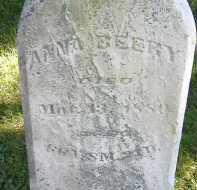 BEERY, ANNA - Allen County, Ohio   ANNA BEERY - Ohio Gravestone Photos