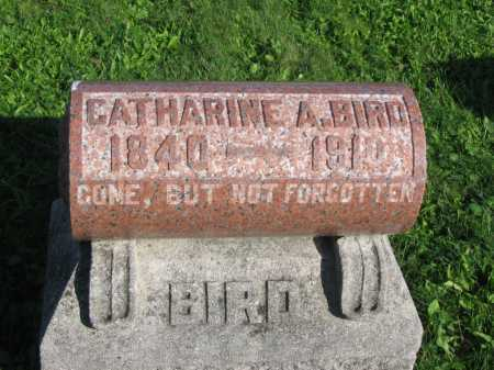 BRECHT BIRD, CATHERINE A. - Allen County, Ohio | CATHERINE A. BRECHT BIRD - Ohio Gravestone Photos