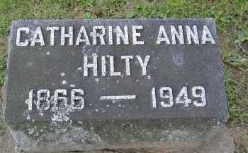 HILTY, CATHARINE ANNA - Allen County, Ohio | CATHARINE ANNA HILTY - Ohio Gravestone Photos