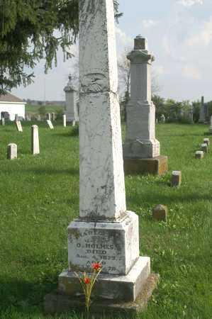 THOMAS HOLMES, RABECCA - Allen County, Ohio | RABECCA THOMAS HOLMES - Ohio Gravestone Photos
