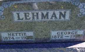 LEHMAN, NETTIE - Allen County, Ohio | NETTIE LEHMAN - Ohio Gravestone Photos
