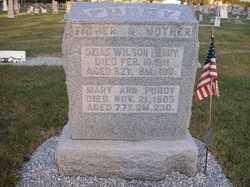 PURDY, OZIAS WILSON - Allen County, Ohio   OZIAS WILSON PURDY - Ohio Gravestone Photos