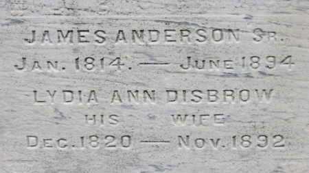 ANDERSON, JAMES SR. - Ashland County, Ohio | JAMES SR. ANDERSON - Ohio Gravestone Photos