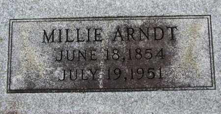 ARNDT, MILLIE - Ashland County, Ohio   MILLIE ARNDT - Ohio Gravestone Photos