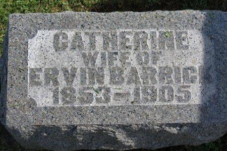 BARRIC, CATHERINE - Ashland County, Ohio | CATHERINE BARRIC - Ohio Gravestone Photos