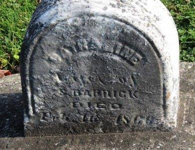 BARRICK, CATHARINE - Ashland County, Ohio   CATHARINE BARRICK - Ohio Gravestone Photos
