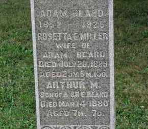 BEARD, ADAM - Ashland County, Ohio | ADAM BEARD - Ohio Gravestone Photos