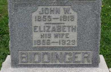 BIDDINGER, ELIZABETH - Ashland County, Ohio | ELIZABETH BIDDINGER - Ohio Gravestone Photos