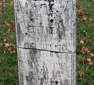 BINEHOWER, SUSANNA - Ashland County, Ohio | SUSANNA BINEHOWER - Ohio Gravestone Photos