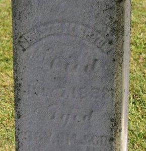 BRYAN, S.A. - Ashland County, Ohio | S.A. BRYAN - Ohio Gravestone Photos