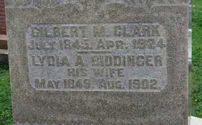 BIDDINGER CLARK, LYDIA A. - Ashland County, Ohio | LYDIA A. BIDDINGER CLARK - Ohio Gravestone Photos