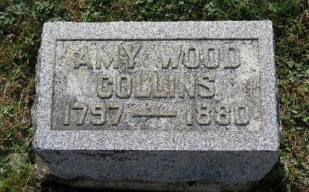 COLLINS, AMY - Ashland County, Ohio | AMY COLLINS - Ohio Gravestone Photos