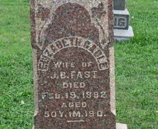 FAST, ELIZABETH - Ashland County, Ohio | ELIZABETH FAST - Ohio Gravestone Photos