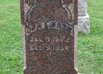 FAST, ORA E. - Ashland County, Ohio | ORA E. FAST - Ohio Gravestone Photos