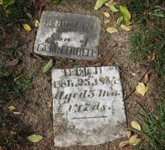 FERRELL, THOMAS - Ashland County, Ohio   THOMAS FERRELL - Ohio Gravestone Photos