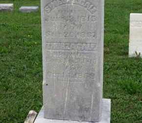GALE, SIMEON - Ashland County, Ohio   SIMEON GALE - Ohio Gravestone Photos