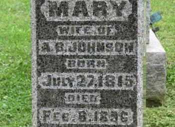 JOHNSON, MARY - Ashland County, Ohio | MARY JOHNSON - Ohio Gravestone Photos