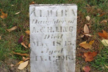 LING, ALMIRA - Ashland County, Ohio | ALMIRA LING - Ohio Gravestone Photos
