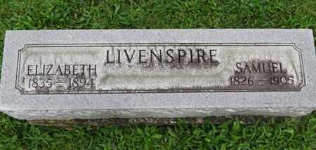 LIVENSPIRE, SAMUEL - Ashland County, Ohio | SAMUEL LIVENSPIRE - Ohio Gravestone Photos