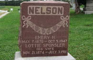 NELSON, EMERY H. - Ashland County, Ohio | EMERY H. NELSON - Ohio Gravestone Photos