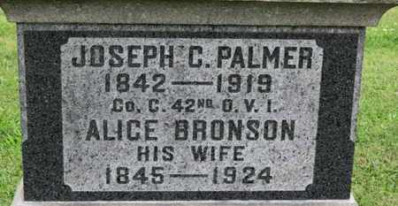 BRONSON PALMER, ALICE - Ashland County, Ohio | ALICE BRONSON PALMER - Ohio Gravestone Photos
