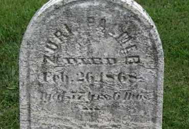 PALMER, ZURI - Ashland County, Ohio | ZURI PALMER - Ohio Gravestone Photos