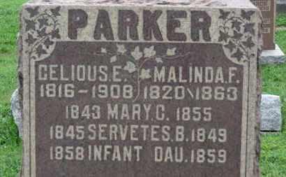 PARKER, SERVETES B. - Ashland County, Ohio | SERVETES B. PARKER - Ohio Gravestone Photos