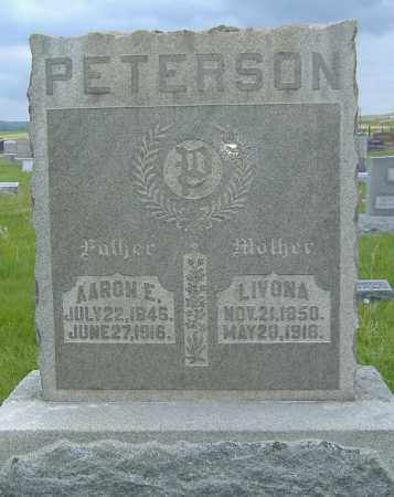 PETERSON, AARON EDWIN - Ashland County, Ohio | AARON EDWIN PETERSON - Ohio Gravestone Photos