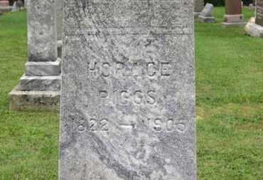 RIGGS, HORACE - Ashland County, Ohio | HORACE RIGGS - Ohio Gravestone Photos