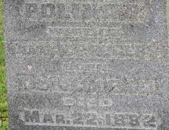ROGERS, POLINA R. - Ashland County, Ohio | POLINA R. ROGERS - Ohio Gravestone Photos