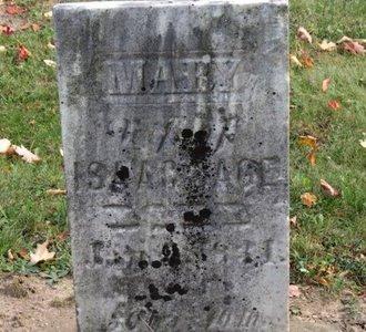 SAGE, ISAAC - Ashland County, Ohio | ISAAC SAGE - Ohio Gravestone Photos