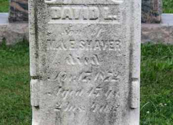 SHAVER, M. - Ashland County, Ohio | M. SHAVER - Ohio Gravestone Photos